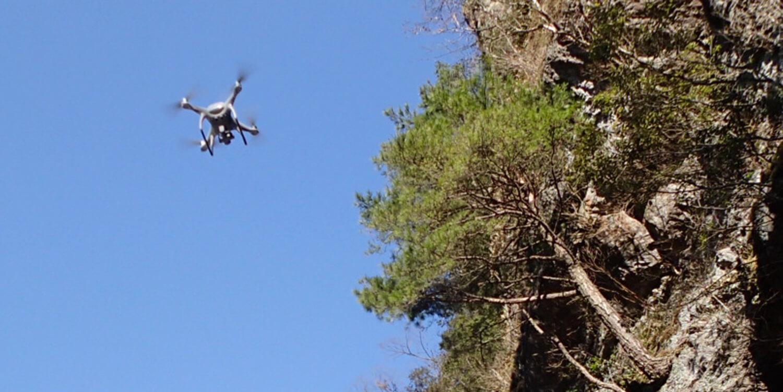 無人航空機(UAV)調査